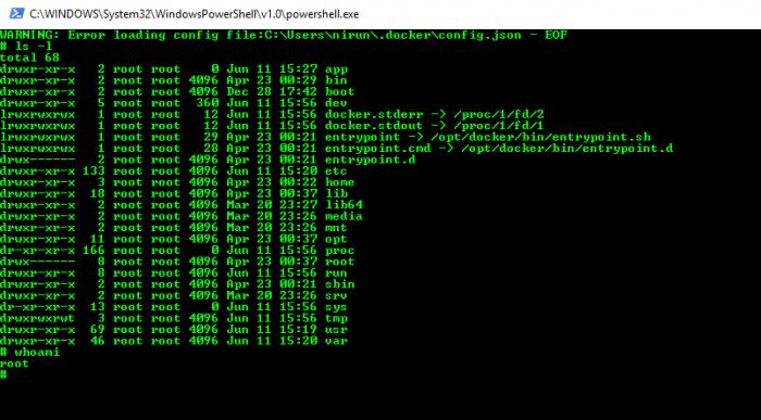 จะ Remote เข้าไปใน Container นั้นๆจะทำอะไรก็ได้เหมือน Linux ตัวนึงปกติ